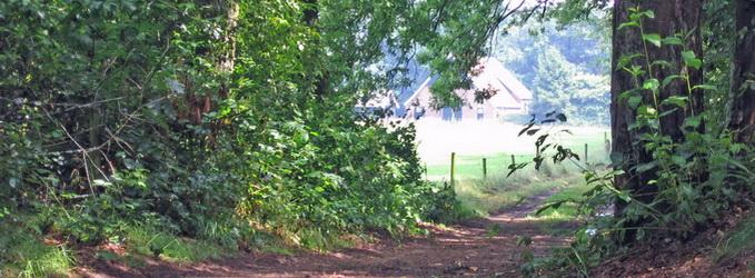 Landgoed De Batenborgh, doorkijk vanuit het Rommelgebergte bij de Meekertweg